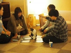 猫カフェSP写真5