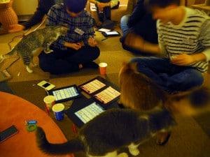 猫カフェSP写真7